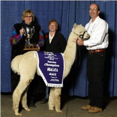 Supreme Champion Avatar with John,Tracy and Jody at Farm Fair International 2003