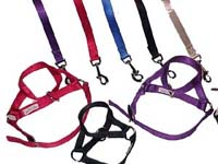 Exotic Accessories include a variety of leads and halters